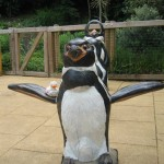Pinguin im Dublin Zoo