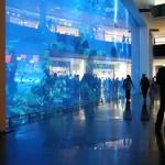 Das Aquarium fanden wir direkt beim Eingang. Es ist gigantisch. Das in unserem Hotel war schon groß, aber das war noch größer - gefühlt.