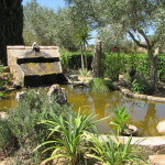 Einen kleinen Teich mit schreckhaften Fröschen gab es auch noch.