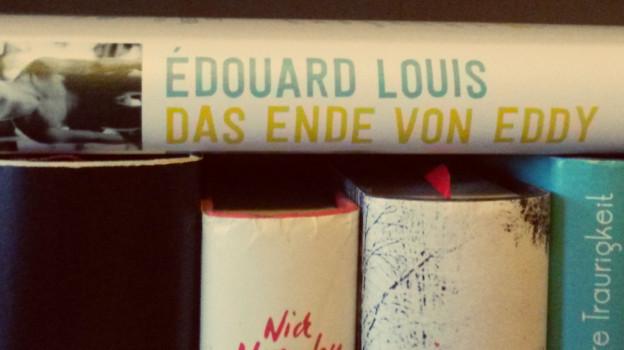 Das Ende von Eddy – Buchkritik