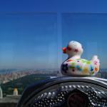 Von Top of the Rock aus hat Ludmilla sich einen Überblick über den Central Park verschafft
