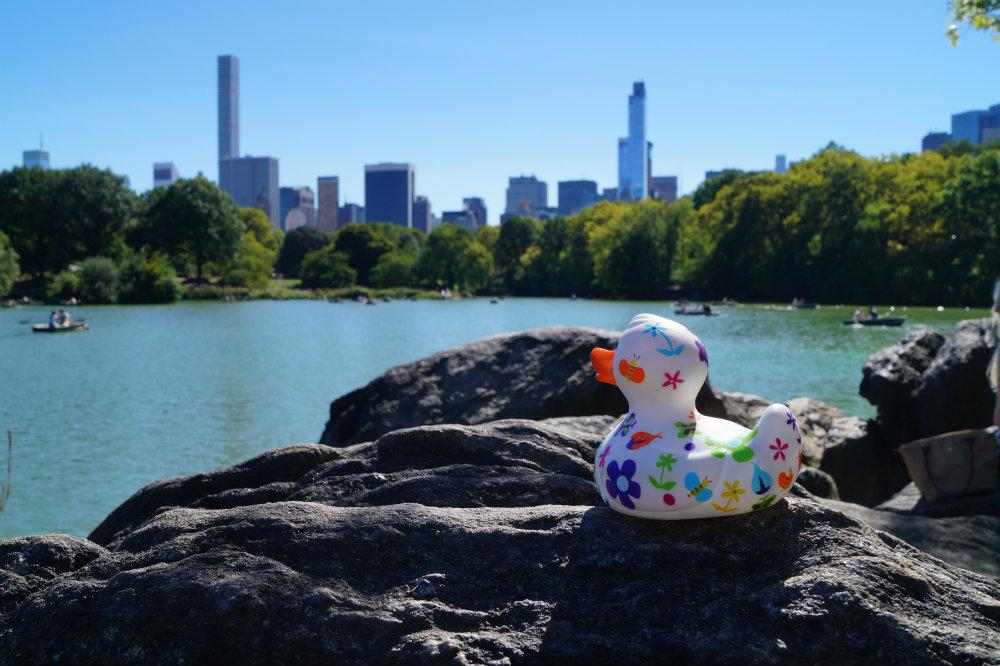 Im Central Park entspannte sie bei perfektem Wetter